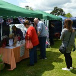 All the fun of the fete to raise funds for Solihull Hospital