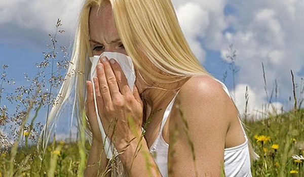 Hay-Fever-Image-600x350